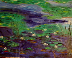 Rye Waterlillies