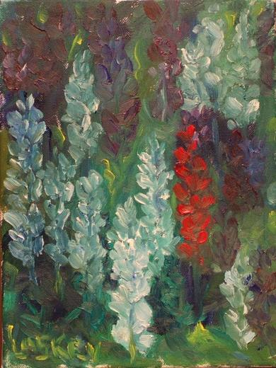 Red Lupine
