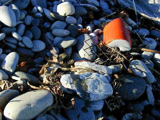 Broken buoy